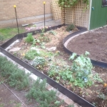 garden-steel-edging2