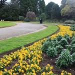 Steel Garden Edging_Victoria (1)