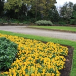 Steel Garden Edging_Victoria (14)
