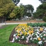 Steel Garden Edging_Victoria (24)