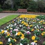 Steel Garden Edging_Victoria (3)