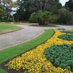Steel Garden Edging_Victoria (6)