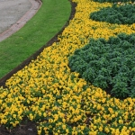 Steel Garden Edging_Victoria (8)