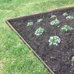 onsite-steel-garden-edging-8-e1501671780758